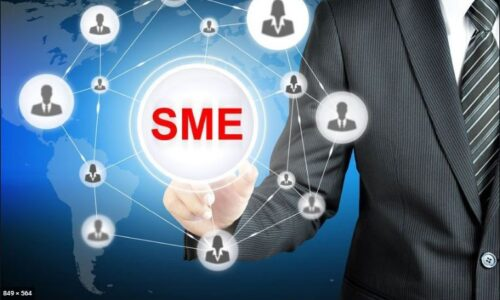 How did the Credit Guarantee Scheme Impact the SME Sector